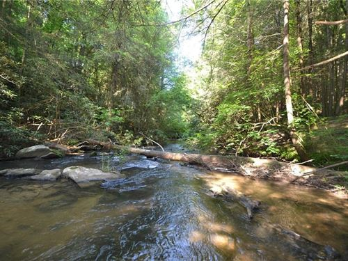 River Lot 4.24 Acre Pickett Mill : Ellijay : Gilmer County : Georgia