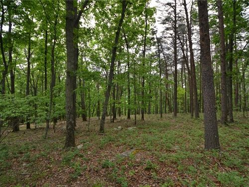 16.85 Acres Preserve Sharp Mountain : Jasper : Pickens County : Georgia