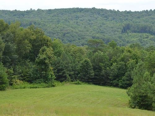 52.22 Acres, Long Branch Farms : Talking Rock : Pickens County : Georgia