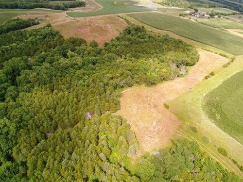 71 ac Diverse Habitat Southern Iowa : Blakesburg : Wapello County : Iowa