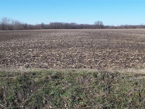 71 Acres For Sale : Keokuk : Lee County : Iowa