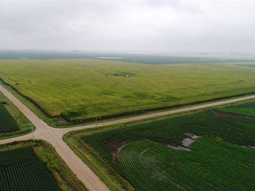 Calhoun County Iowa Tillable : Lohrville : Calhoun County : Iowa