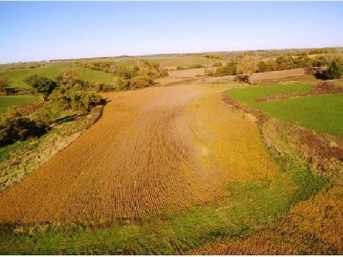 49 Acre Monroe County Crop Hunting : Melrose : Monroe County : Iowa