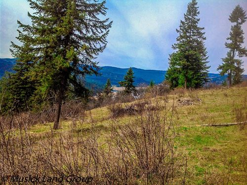 Building Lot Dworshak Reservoir : Orofino : Clearwater County : Idaho
