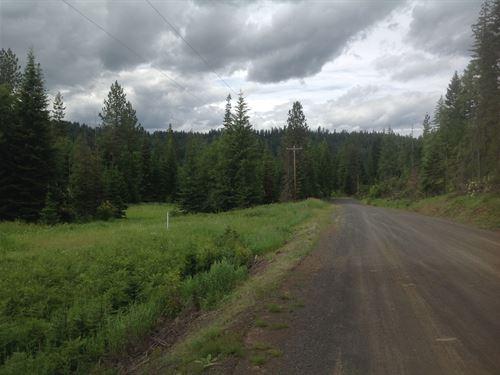 Small Acreage Building Site : Orofino : Clearwater County : Idaho