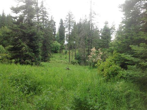 Recreational/Buiding Land Close to : Orofino : Clearwater County : Idaho