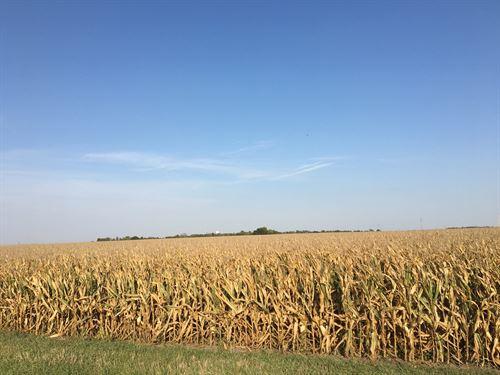 Menard County Farm, Class Tillable : Greenview : Menard County : Illinois