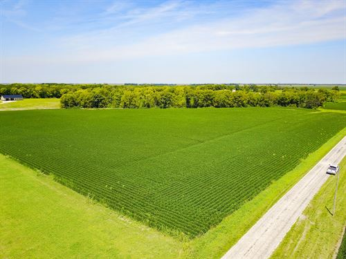 Moultrie County 60 Acre Hunting : Bethany : Moultrie County : Illinois
