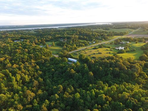 63.5 Acres Wooded Property : Grand Chain : Massac County : Illinois