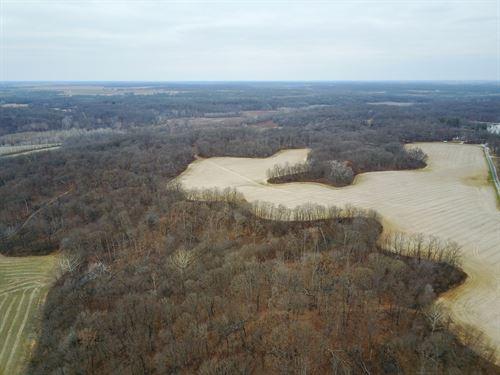 Hunting Farm Property Macoupin : Plainview : Macoupin County : Illinois