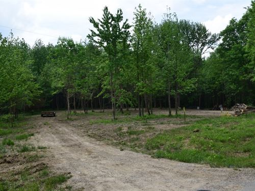 Spacious Country Lot Forest : Robinson : Crawford County : Illinois