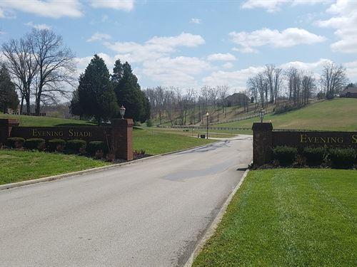 Beautiful Land Evening Shade : Somerset : Pulaski County : Kentucky