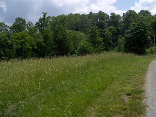 Four Acres, Albany, Kentucky : Albany : Clinton County : Kentucky
