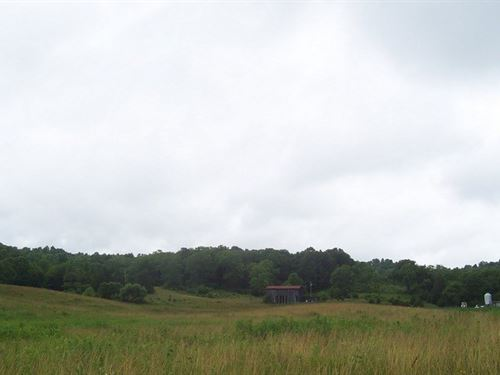 Acreage, Home, Ponds, Wildlife : Bonnieville : Hart County : Kentucky