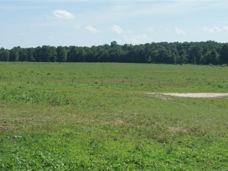 South Central Kentucky Farm : Bowling Green : Warren County : Kentucky