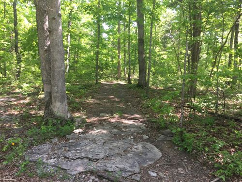 49.52 Acres Adjoining Cumberland : Burnside : Pulaski County : Kentucky