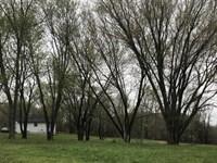 Home, Acreage, Wildlife, Metcalfe : Edmonton : Metcalfe County : Kentucky