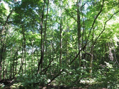 Wooded, Acreage, Hunting, Edmonton : Edmonton : Metcalfe County : Kentucky