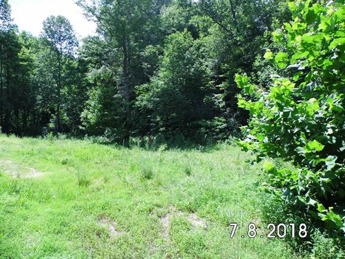 25 Wooded Acres 15 Mins South : Hustonville : Lincoln County : Kentucky