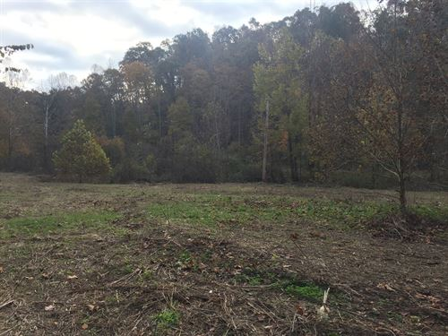 62.48 Acres Mostly Wooded Creek : Kings Mountain : Casey County : Kentucky