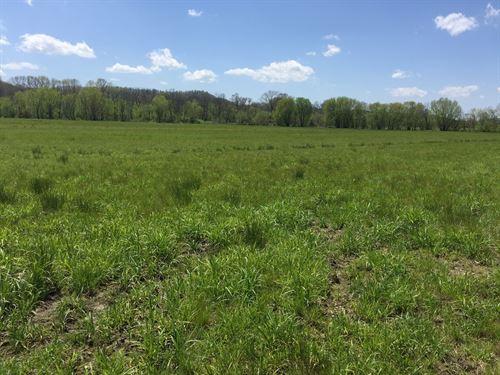 25 Acre Hobby Farm, Building Sites : Liberty : Casey County : Kentucky