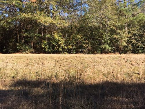 Spacious 26 Acre Home Site Weekend : Covington : Saint Tammany Parish : Louisiana