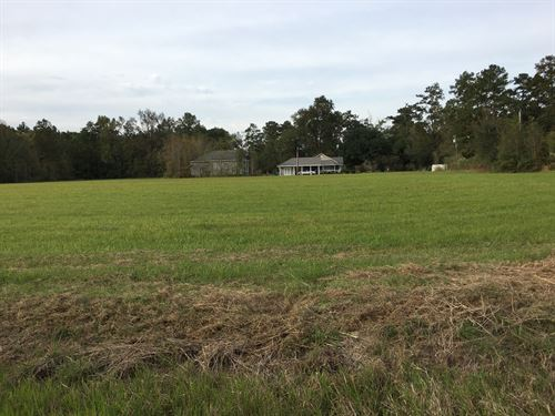 Estate Sized 1.69 Acre Rural Lot : Ponchatoula : Tangipahoa Parish : Louisiana