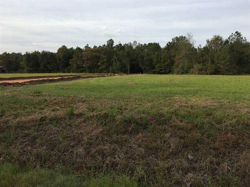 Rural Lot City Ponchatoula : Ponchatoula : Tangipahoa Parish : Louisiana
