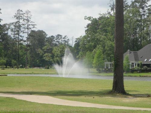 Half Acre Golf Course Site Carter : Springfield : Livingston Parish : Louisiana