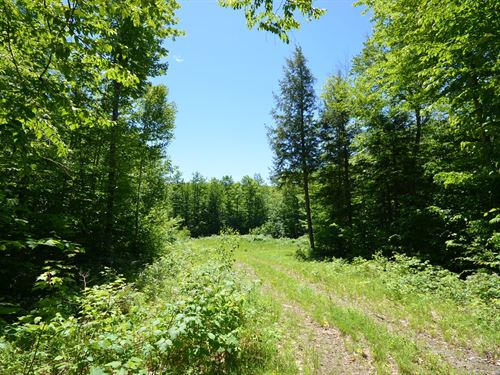 Maine Land For Sale in Avon : Avon : Franklin County : Maine
