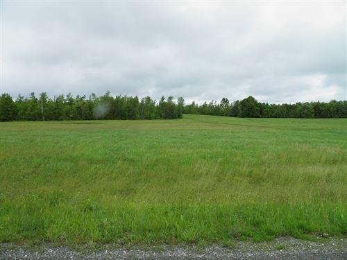 Maine Land For Sale in Benedicta : Benedicta : Aroostook County : Maine