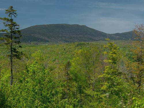 Maine Land For Sale in Phillips : Phillips : Franklin County : Maine