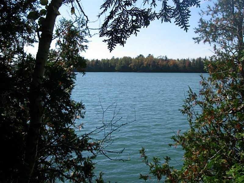 Maine Coastal Land in Lubec : Land for Sale : Lubec : Washington County :  Maine