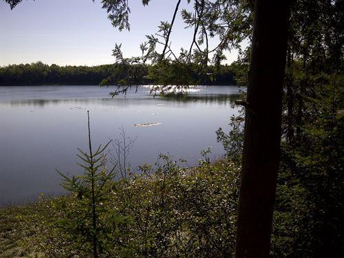 Maine Oceanfront Land in Lubec : Lubec : Washington County : Maine