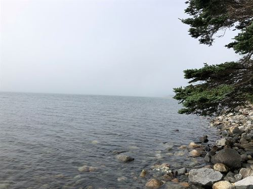 Deep Ocean Front Land, Cutler : Princeton : Washington County : Maine