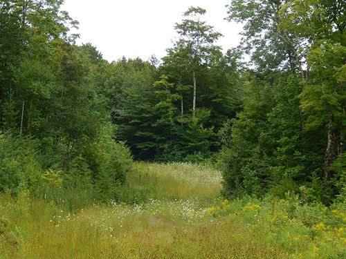 Recreational Land, Springfield : Winn : Penobscot County : Maine
