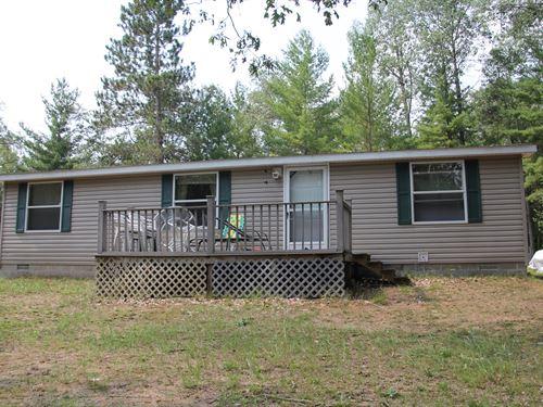 Michigan Lakefront Property, 40 : Atlanta : Montmorency County : Michigan