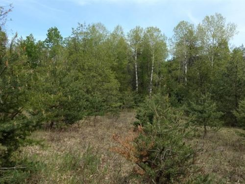 Vacant Land, 1.4 Acre Atlanta : Atlanta : Montmorency County : Michigan