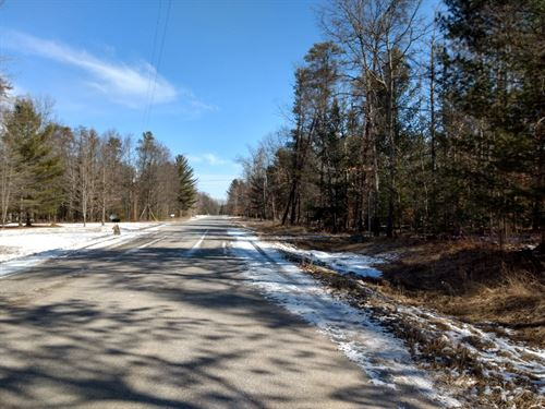 Vacant Property Near Atlanta MI : Atlanta : Montmorency County : Michigan