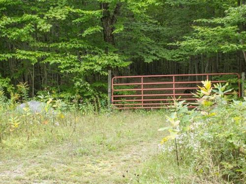 Parklike Setting 20 Acres, Driveway : De Tour Village : Chippewa County : Michigan