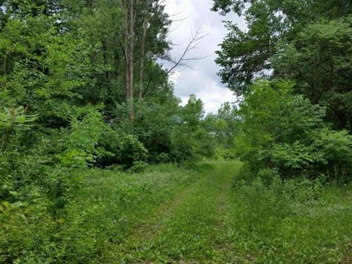 Fair Lake Acreage, View, Frontage : Delton : Barry County : Michigan
