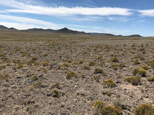 3,000 Acres Costilla County : Alamosa : Colorado