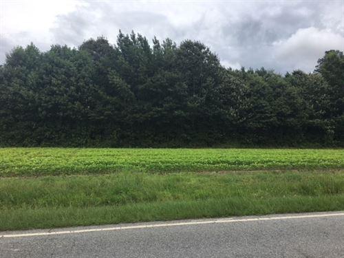 Farmland & Timberland, Ahoskie : Ahoskie : Hertford County : North Carolina