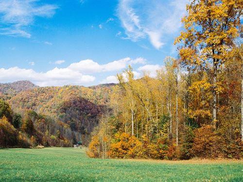 Magnificent Mountain Retreat : Asheville : Buncombe County : North Carolina