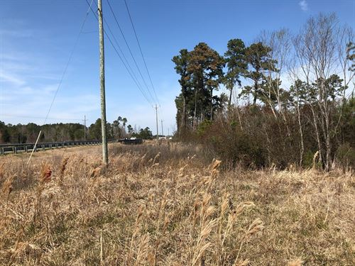 Beaufort County Lot, Belhaven NC : Belhaven : Beaufort County : North Carolina