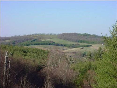 7+ Mountain Acres, Fantastic Views : Ennice : Alleghany County : North Carolina