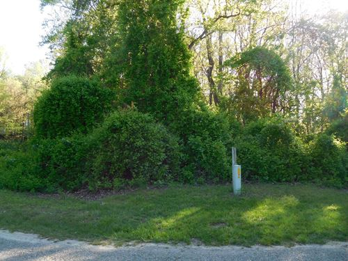 Great Building Lot 2.19 Acres : Ennice : Alleghany County : North Carolina