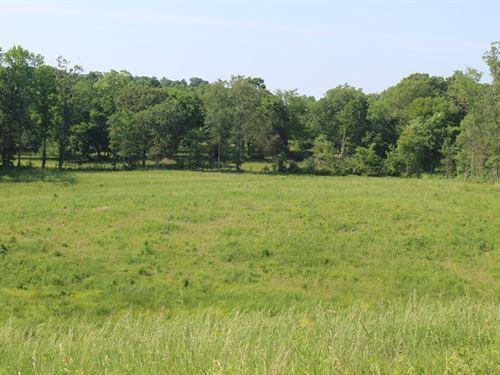 Pasture Chatham Co.'S Goldston, NC : Goldston : Chatham County : North Carolina