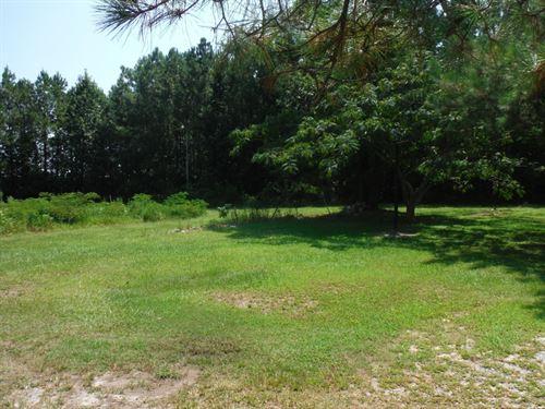 Residential Building Lot : Harrellsville : Hertford County : North Carolina