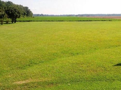 Cleared Lot Beautiful Water Views : Hertford : Perquimans County : North Carolina